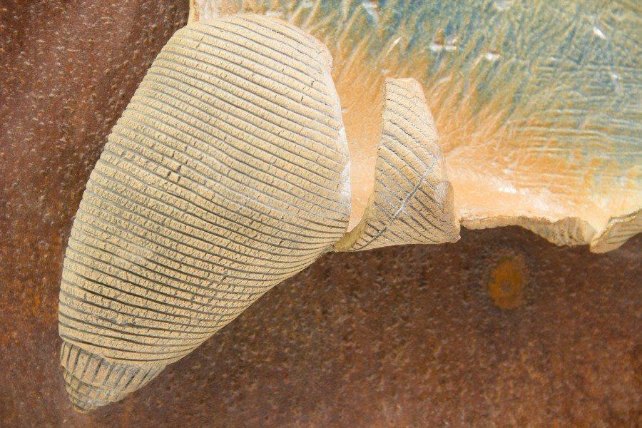 scultura stilizzata di una conchiglia montata su supporto in ferro